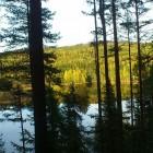 Foto: Anette Johansson